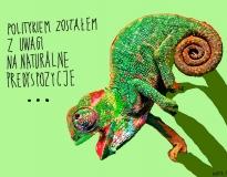 0103 kameleon