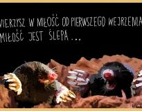 0122 krety